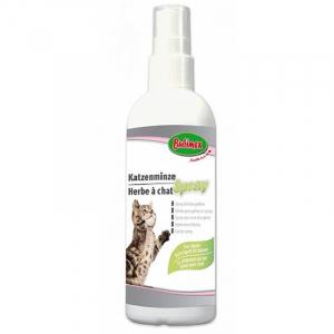 Herbe à chat en spray - Bubimex