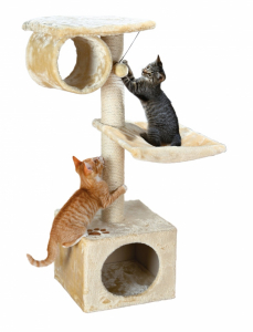 Arbre à chat San Ferrando - Trixie - 106 cm
