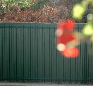 Occultations Screeno Line en PVC pour panneaux Nylofor - Betafence - vert - 1.23 m