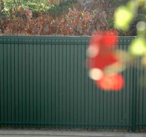 Occultations PVC pour panneaux Nylofor Screeno Line - Betafence - vert - 1.03 m