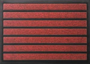 Tapis combi'absorbant - Rouge - 40 x 60 cm