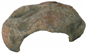 Grotte pour reptile - Reptiland - 30 x 10 x 25  cm