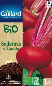 Bettrave d'égypte - Bio - Caillard