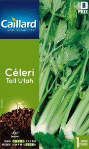 Celeri tall utah - Caillard
