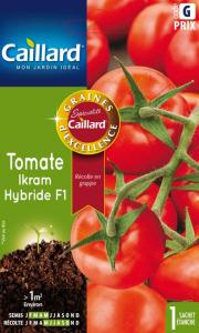Tomate ikram hybride F1 - Caillard