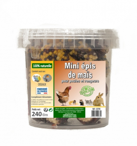 Mini épis de maïs pour poules et rongeurs - 240 g