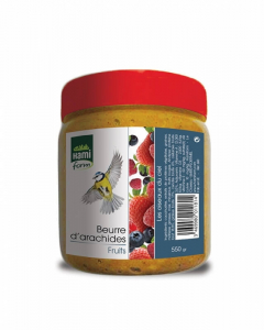Beurre d'arachides aux fruits - Hami Form  - 550 g