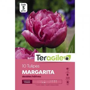Tulipe double hâtive margarita - Calibre 12/+ - X10
