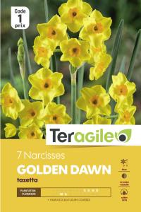 Narcisse tazetta geranium - Calibre 14/16 - X7