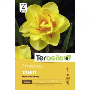 Narcisse double tahiti - Calibre 14/16 - X7