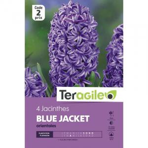 Jacinthe blue jacket - Calibre 16/17 - X 4