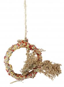 Native Snacks Ø 11 cm - Anneau avec millet en grappes pour oiseaux