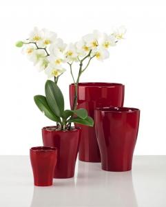Vase pour orchidée 608 - Deroma - Dark red - Ø 17 cm