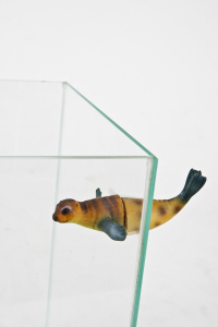 Décor aquarium Magnet Otarie 1 - Zolux