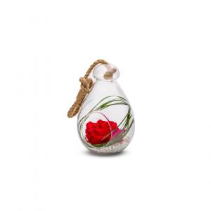 Rose stabilisée dans verrerie Globe