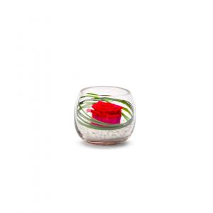 Rose stabilisée dans verrerie Venezia - Diamètre 8 cm