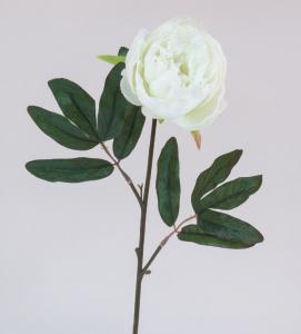 Pivoine - Arche Diffusion - Blanc - 65 cm