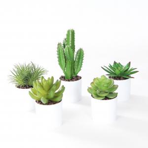 Pot décoration cactus - Arche Diffusion - Blanc