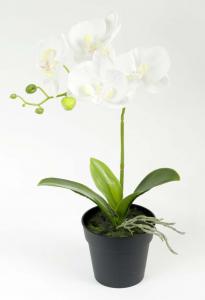 Pot orchidée - Arche Diffusion - Blanc - 36 cm