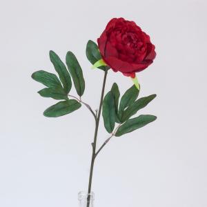 Pivoine - Arche Diffusion - Rouge - 65 cm