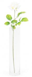 Rose - Arche Diffusion - Blanc - 67 cm