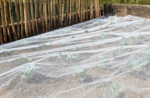 Filet anti-insecte Biocontrol - Nortene - 2,20x5 m
