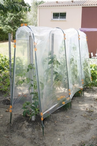 Film de protection Tomato - Nortene - 5x3,5 m