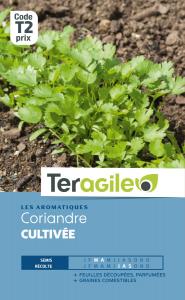 Coriandre cultivée - Graines - Teragile