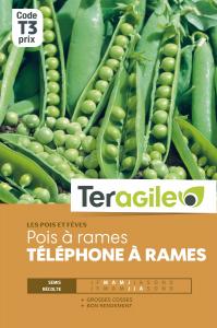 Pois à rames telephone - Graines - Teragile