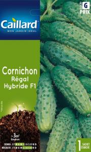 Cornichon regard hybride F1 - Caillard