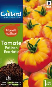 Tomate potiron écarlate - Caillard