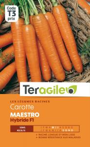 Carotte maestro hybride - Graines - Teragile