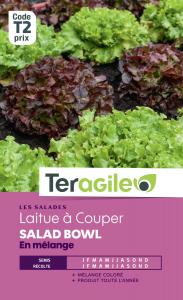 Laitue à couper salad bowl varié - Teragile