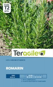 Romarin - Graines - Teragile