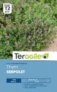 Thym serpolet - Teragile
