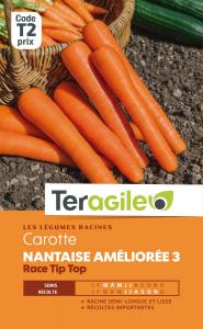 Carotte nantaise améliorée 3 tip top - Graines - Teragile