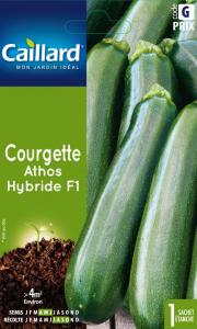 Courgette athos hybride F1 - Caillard