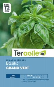 Basilic grand vert - Teragile