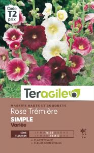 Rose Trémière simple - Graines - Teragile