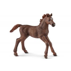 Figurine Poulain Pur-sang Anglais - Schleich - 9 x 3.3 x 8 cm