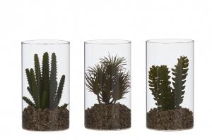 Plante succulente artificielle en pot en verre - 18cm