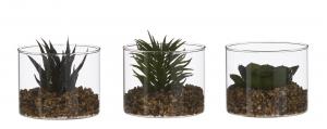 Plante succulente artificielle en pot en verre - 8cm