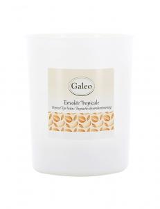 Bougie parfumée Envolée tropicale - 180g - Galéo