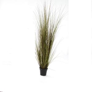 ONION GRASS 92CM VERT