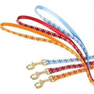 Laisse nylon Colorful pour chat - Zolux - 1 m / 10 mm - Orange