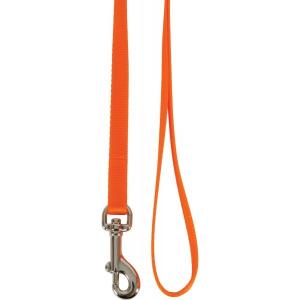 Laisse nylon pour chat - Zolux - Orange