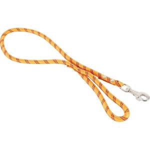 Laisse nylon Corde pour chien - Zolux - 1,2 m / 13 mm - Orange