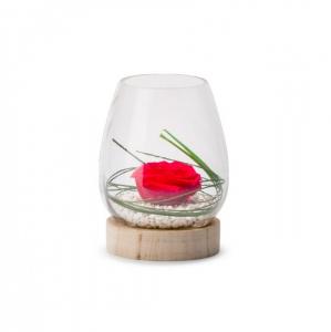 Rose stabilisée dans verrine Tulip woodM