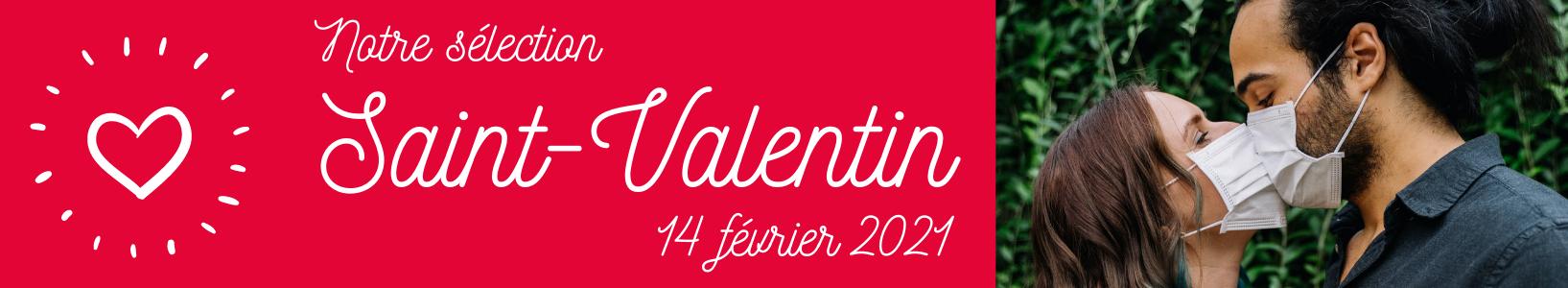 banniere saint valentin