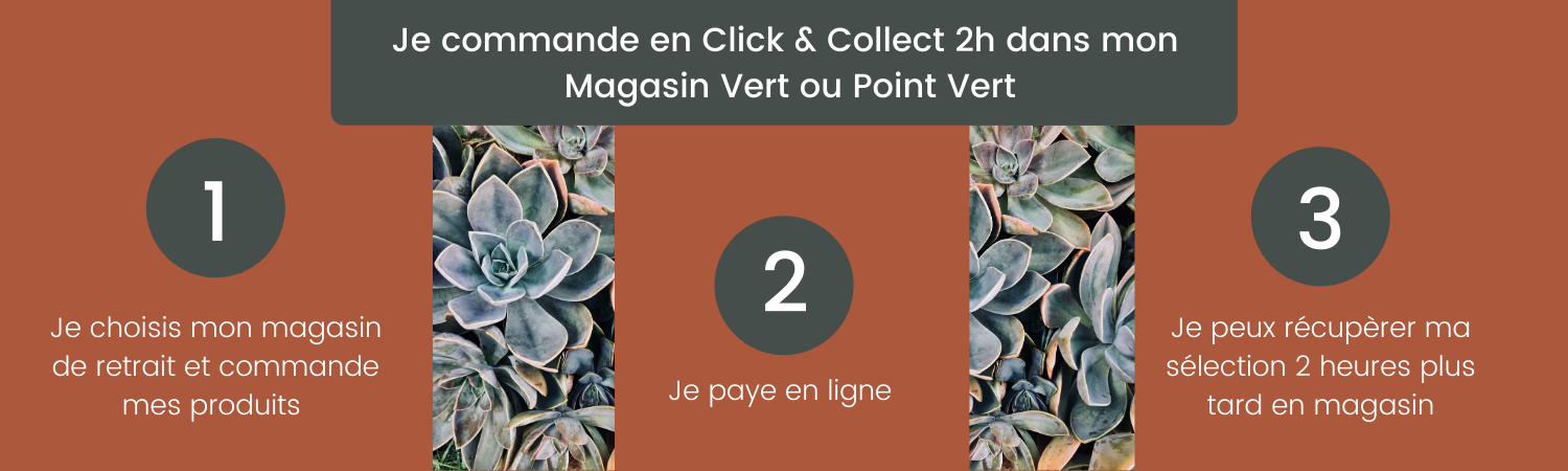 fonctionnement click and collect